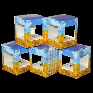 DSC_0046 коробочки